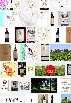 Côtes de Bordeaux Castillon (aoc-aop)